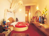 hotels in manali
